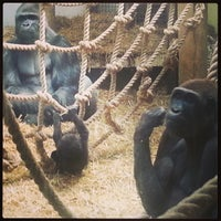 Photo taken at Blackpool Zoo by James W. on 6/21/2013