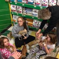 Photo taken at Pet Supplies Plus by Cote Media on 2/2/2014