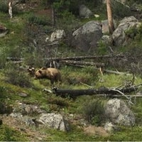 Photo taken at Grizzly House by Ryu E. on 7/20/2016