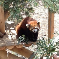 Photo taken at Zoo de Granby by Claudia D. on 6/3/2013