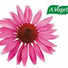 Photo taken at Verlag A.Vogel by A.Vogel on 5/22/2012