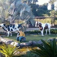 Photo taken at Planeta Flores by Elton Nunes de O. on 8/3/2014
