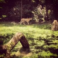 Photo taken at Cincinnati Zoo & Botanical Garden by Kevin M. on 7/27/2013