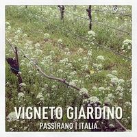 Photo taken at Vigneto Giardino by Lucia B. on 4/11/2013