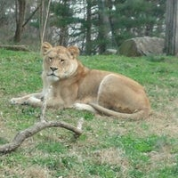 Photo taken at Maryland Zoo in Baltimore by missy h. on 1/21/2013