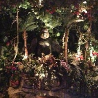 Photo taken at Rainforest Cafe Dubai by Tuba R. on 6/15/2013