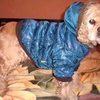 Photo taken at www.dog-star.com.ua by Anya V. on 11/2/2014