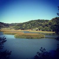 Photo taken at Lake Chabot Regional Park by Alan T. on 6/17/2013