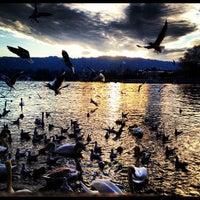 Photo taken at Bellevueplatz by Cesar M. on 3/1/2012
