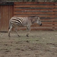 Photo taken at Lehigh Valley Zoo by Nicole H. on 3/31/2012