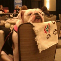 Photo taken at BarkWorld Expo 2011 by Chad E. on 10/1/2011