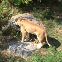 Photo taken at Zoo de Granby by Shawn R. on 8/25/2012