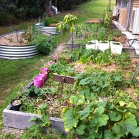 Photo taken at Cabarita Community Garden by Ethikl Online Eco Market w. on 8/21/2012
