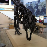Photo taken at New Mexico Museum of Natural History & Science by Melissa L. on 3/19/2012