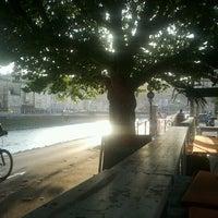 Monkeys Cafe.bar
