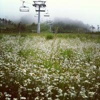 Photo taken at Alpensia Resort Ski Area by Sunhwa H. on 6/27/2012