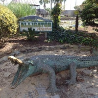 Photo taken at Alligator Adventure by Erica A. on 3/23/2012