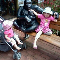 Photo taken at Perth Zoo by Lucy M. on 11/11/2011