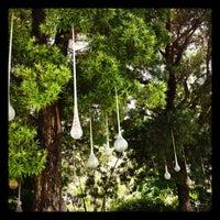 Photo taken at Miami Beach Botanical Garden by Danielle L. on 7/6/2012