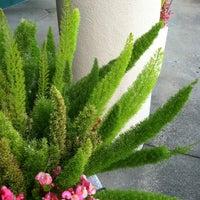 Photo taken at Pearl Garden Restaurant by Hiten V. on 8/13/2012