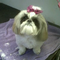 Photo taken at Groomingdales Pet Spa by angie s. on 9/19/2011