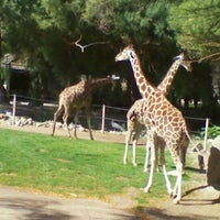Photo taken at Reid Park Zoo by sunny on 11/25/2011