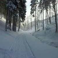 Photo taken at Sokołowsko by Benedykt W. on 1/31/2012