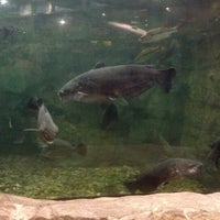 Photo taken at Bass Pro Shops Outdoor World by Kim S. on 7/12/2012