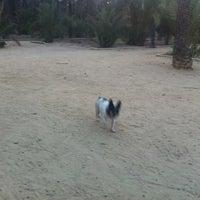 Photo taken at Parque Bulldog Frances by Joaquín P. on 7/9/2012