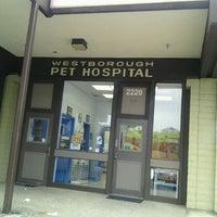 Photo taken at Westborough Pet Hospital by Patty H. on 7/14/2012