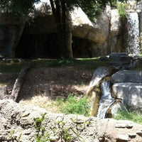 Photo taken at World of Primates at Ft. Worth Zoo by Paul M. on 5/27/2012