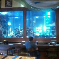 Photo taken at Islamorada Fish Company by Keith D. on 1/2/2012