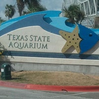 Photo taken at Texas State Aquarium by Fernando and Heather R. on 8/17/2011