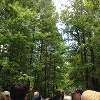 Photo taken at Bird Rookery Swamp by Linda J. on 5/22/2012