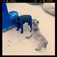 Photo taken at Emery Barnes (Dog Park) by Izzam @. on 7/2/2012
