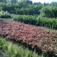 Photo taken at kedamean gresik by Arif R. on 10/14/2011