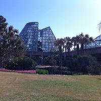 Photo taken at San Antonio Botanical Garden by Eva A. on 3/6/2011