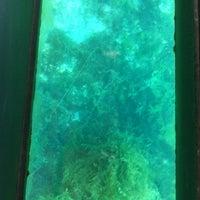 Photo taken at Texas State Aquarena Center by Tom R. on 8/9/2012