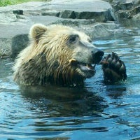 Photo taken at Minnesota Zoo by Miranda N. on 5/28/2012