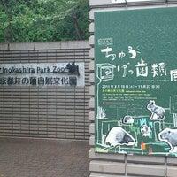 Photo taken at Inokashira Park Zoo by Akashi S. on 8/15/2011
