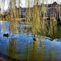 Photo taken at Lietzensee by Alena A. on 3/22/2012