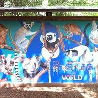 Photo taken at Duke Lemur Center by Stephanie T. on 9/6/2012