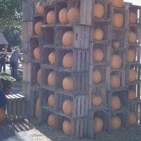 Photo taken at Mapleside Farms by Alexandria S. on 9/24/2011