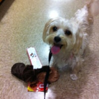 Photo taken at PetSmart by Jody G. on 5/23/2012