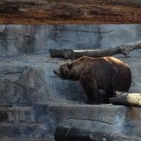 Photo taken at John Ball Zoo by Brian K. on 3/18/2012