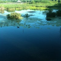 Photo taken at Green Cay Wetlands by Andrew W. on 7/31/2011