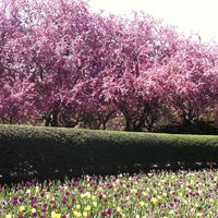 Photo taken at Central Park - Conservatory Garden by Christopher F. on 4/26/2011
