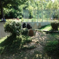 Photo taken at Smithsonian National Zoological Park by Robert P. on 7/18/2012