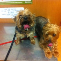 Photo taken at Banfield Pet Hospital by MoniQue on 5/5/2012