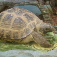 Photo taken at Petco by Hattycakes H. on 2/16/2011